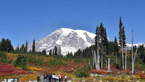 Zugang zu Natur pur: Nationalparks in Washington State